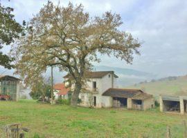 Casa indipendente con terreno a Melito Irpino