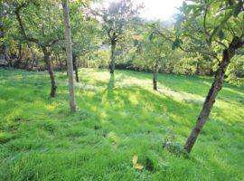 Casa con giardino di 900 Mq a Trevico