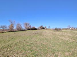 Terreni agricoli di 20.000 Mq a Gesualdo