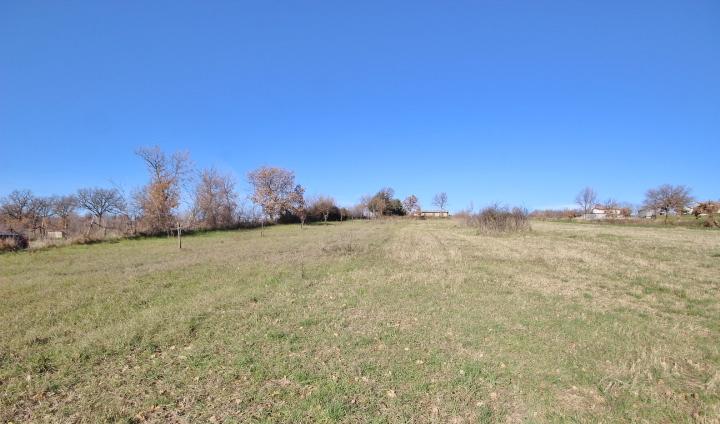 terreni agricoli di 20000 mq a gesualdo avellino