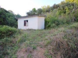 Terreno agricolo con deposito a Luogosano