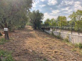 Terreno edificabile di 710 Mq a Mirabella Eclano