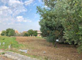Struttura grezza con terreno di 2300 Mq a Mirabella Eclano