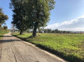 Terreno agricolo fronte strada a Bonito