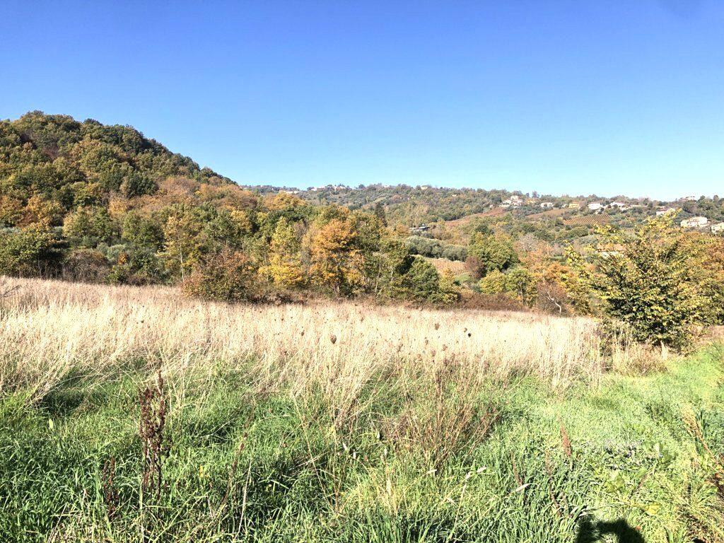 terreno agricolo in zona panoramica a montemarano