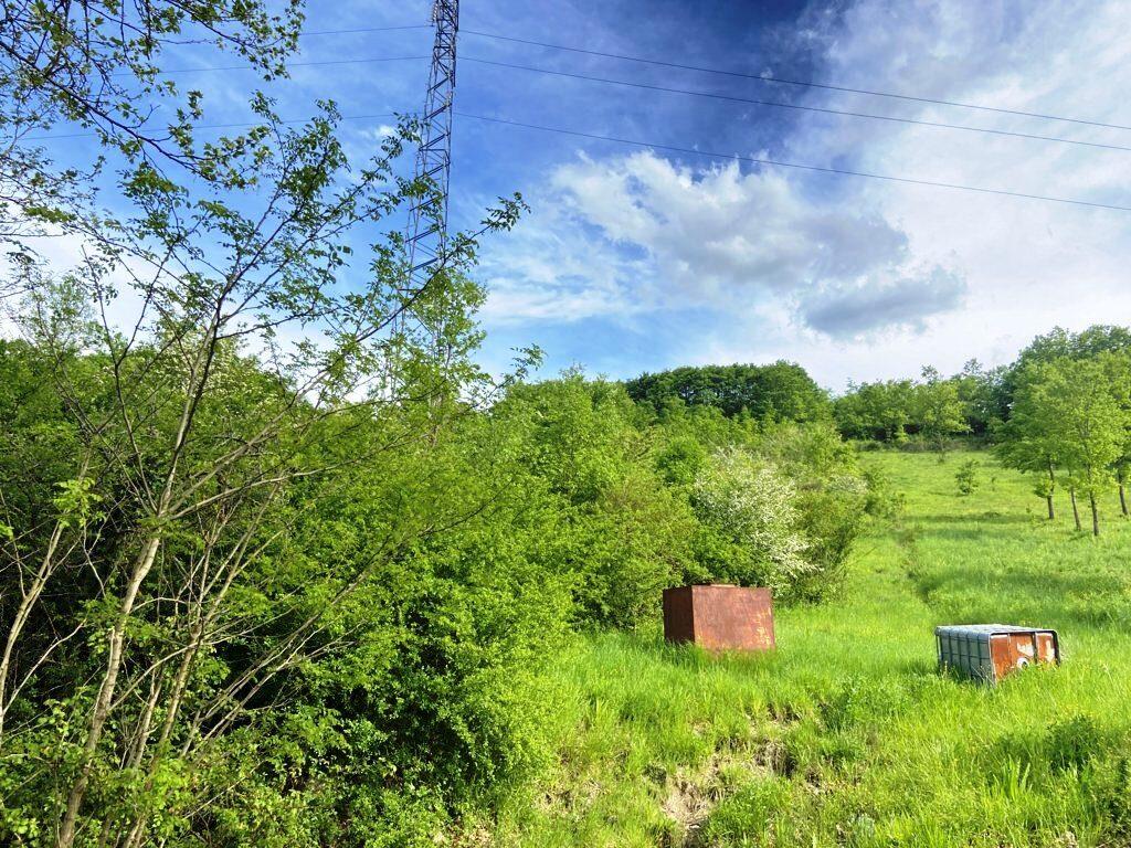 terreno-agricolo-ponteromito