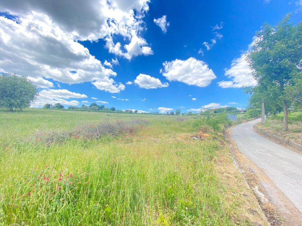 terreno agricolo fronte strada a paternopoli